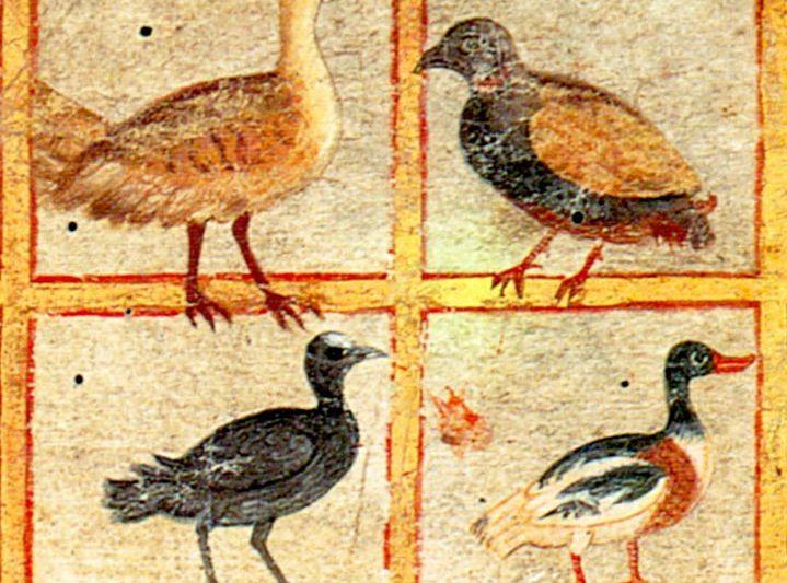 I PIU' ANTICHI CODICI MINIATI (Dioscoride di Vienna, Iliade Ambrosiana, Virgilio Vaticano, Virgilio Romano)