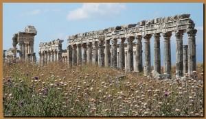 Colonnato romano-ellenistico di Apamea in Siria.