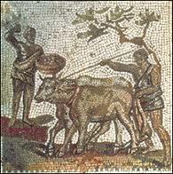 Aratura di un campo in un mosaico dell'Africa proconsolare.