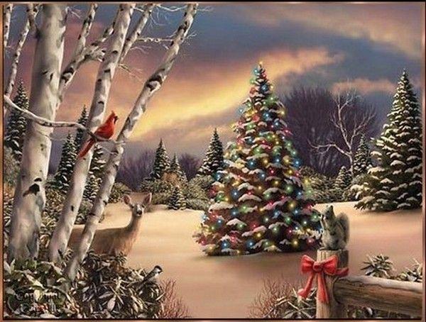 Laffascinante Storia Dellalbero Di Natale Prima Parte Loasi
